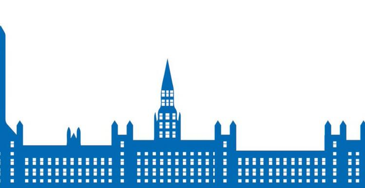 Graphic of the house of commons